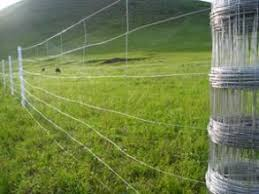 China High Tensile Fixed Farm Cattle Wire Fence Grassland Fence China Electrol Galvanized Field Fence Pvc Manufacturer Grassland Fence