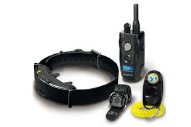 3 Best Remote Dog Collars For The Everyday Working Canine Gearjunkie Dog Training Dog Collar Dog Training Collar