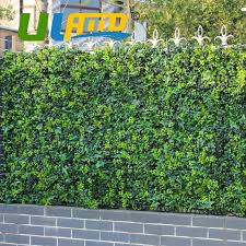 2020 10 X10 Artificial Ivy Fencing Privacy Grass Fence Plastic Uv Decorative Boxwood Topiary Bush Hedges For Garden G0602a009 From Oopp 159 64 Dhgate Com
