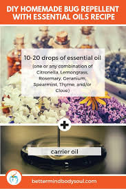 31 powerful essential oil bug repellent