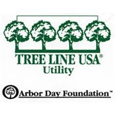 Tree Line Usa Decal Sticker Decals Stickers Foundation Logo Stickers