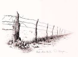 Don T Fence Me In 16 X11 3 4 D Morgan Art