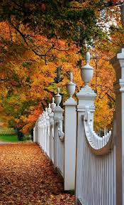 White Picket Fences Autumn Leaves Is There Anything More Beautiful Beautiful Fall Scenery Landscape
