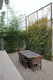 10 Bring Climbing Plants To New Heights With A Wire Trellis Less Expected Than Wood A Me Green Backyard Green Backyard Landscaping Privacy Fence Landscaping
