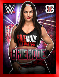 brie bella wwe chions roster