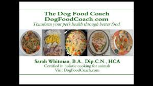 vet remended homemade dog food you