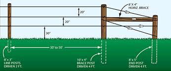 Three Wire Vertical Trellis