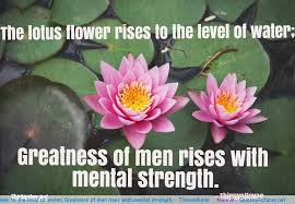 quotes about lotus flower quotes