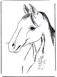 Kleurplaten Paarden Kleurplaten Paarden