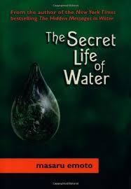 ✓ secret life of water pdf by ↠ masaru emoto david a