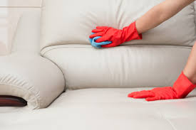 keeping leather couch mold free