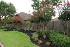Backyard Privacy Fence Landscaping Ideas On A Budget 43 Privacy Fence Landscaping Fence Landscaping Privacy Landscaping