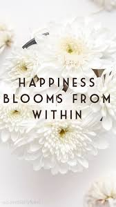 happiness blooms from in daisy flowers quote inspirational