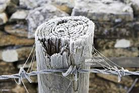 Hoar Frost Covered Wooden Barbed Wire Fence Post Oxfordshire News Photo Getty Images
