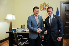Meeting of Archil Talakvadze with Congressmen Adam Kinzinger and Alex  Mooney - Parliament of Georgia