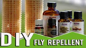 homemade fly repellent hangers for your