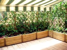 Windbreaks For The Balcony What Are The Options Interior Design Ideas Ofdesign