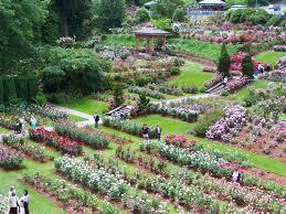 rose test garden celebrates 100 years