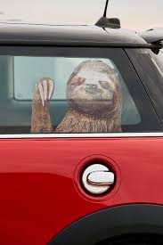 Every Car Needs Its Very Own Sloth