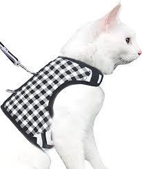 Pet Supplies Yizhi Miaow Kitten Harness With Leash X Small Adjustable Ferret Kitten Walking Jackets Black Plaid Amazon Com