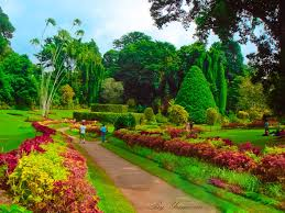 السياحة في سيريلانكا Images?q=tbn%3AANd9GcQ3gi8IV0os1hvCBDMtKOPG-FY5EPpAMFZEvNM_6w3SCEanDkoH&usqp=CAU