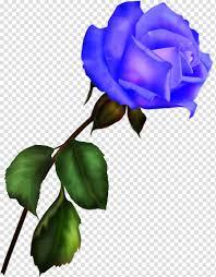 الوردة الزرقاء حديقة الورود الرقمية أرجواني Png