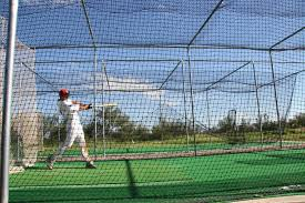 batting cage in your backyard
