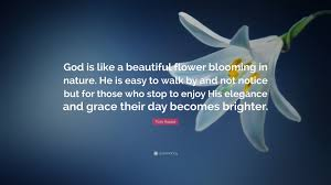 """tom krause quote """"god is like a beautiful flower blooming in"""
