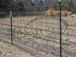 Hog Wire Fence Home Tools And Accessories Carousell Philippines