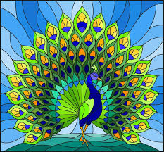 peacock stained glass stock
