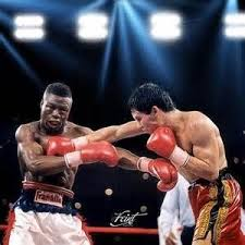 julio cesar chavez vs meldrick taylor - Yahoo Image Search Results | Boxing  images, Boxing fight, Julio cesar