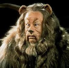 Image result for cowardly lion pic