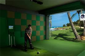 impact screen 101 golf simulator forum
