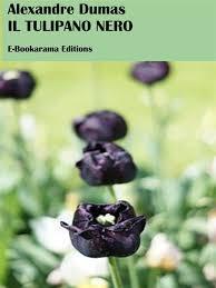Il tulipano nero eBook by Alexandre Dumas - 9788827562604