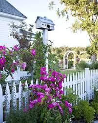 500 Picket Fences Ideas White Picket Fence Cottage Garden Garden Gates