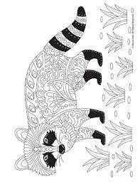 Raccoon Adult Coloring Page Mandala Kleurplaten Kleurplaten En