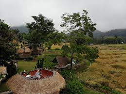 resort the countryside pai thailand