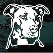 True To Life Pitbull Head Car Decals Window Stickers Decal Junky
