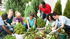 At-Risk Teens Grow Hope in Community Garden | Guideposts