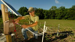 Setting Up The Hot Zone Fence Tips Midwest Whitetail