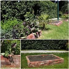 gardening zones garden idea