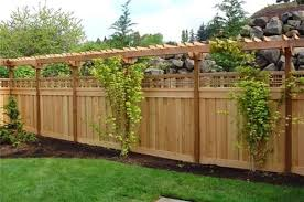 Add This Pergola Type Trellis Over The Side Fence Add Sone Sturdy Flowering Vine And A Privacy Screen Is Creat Backyard Fences Backyard Privacy Fence Designs