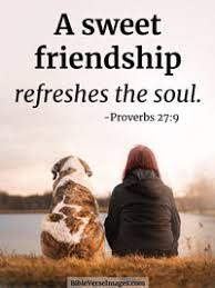 bible verse about friendship proverbs bible verse images