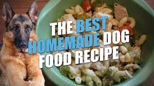 the best homemade dog food recipe