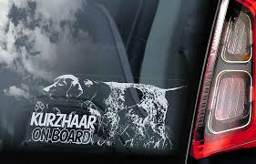 Kurzhaar Car Sticker German Shorthaired Pointer Dog Window Sign Decal Gift V01 Ebay