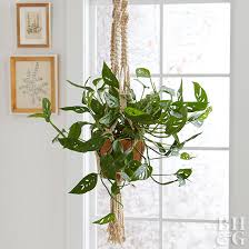 Guide To Hanging Plant Hooks Better Homes Gardens