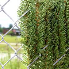 4 Chain Link Fence Dura Hedge Privacy Slats Hedge Slats Privacy Slat King