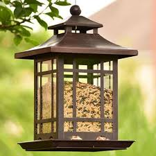 Bird Feeder Buying Guide