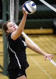 Meyer following in the footsteps of past Elmwood-Murdock stars | High  School Volleyball | journalstar.com