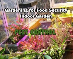 indoor gardening project part 6